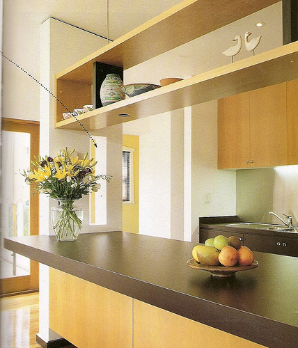 Elegant lifestyle contemporary kitchen design ideas