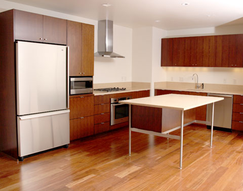 minimalist design of this kitchen island takes up very little visual space